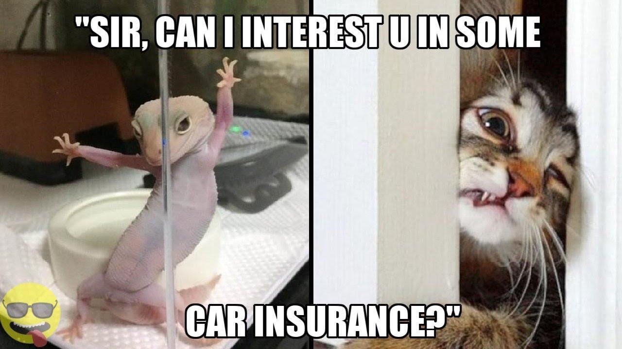 Health Insurance Memes